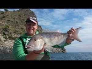 pesca al vivo desde costa