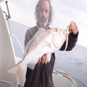 Pesca a Jigging 3