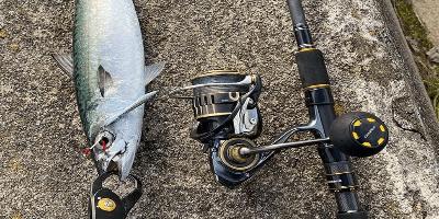 Prime day pesca